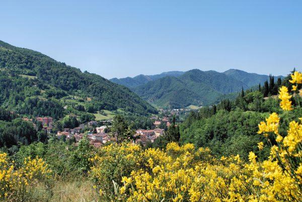 Azienda Agrituristica Monte di Sotto